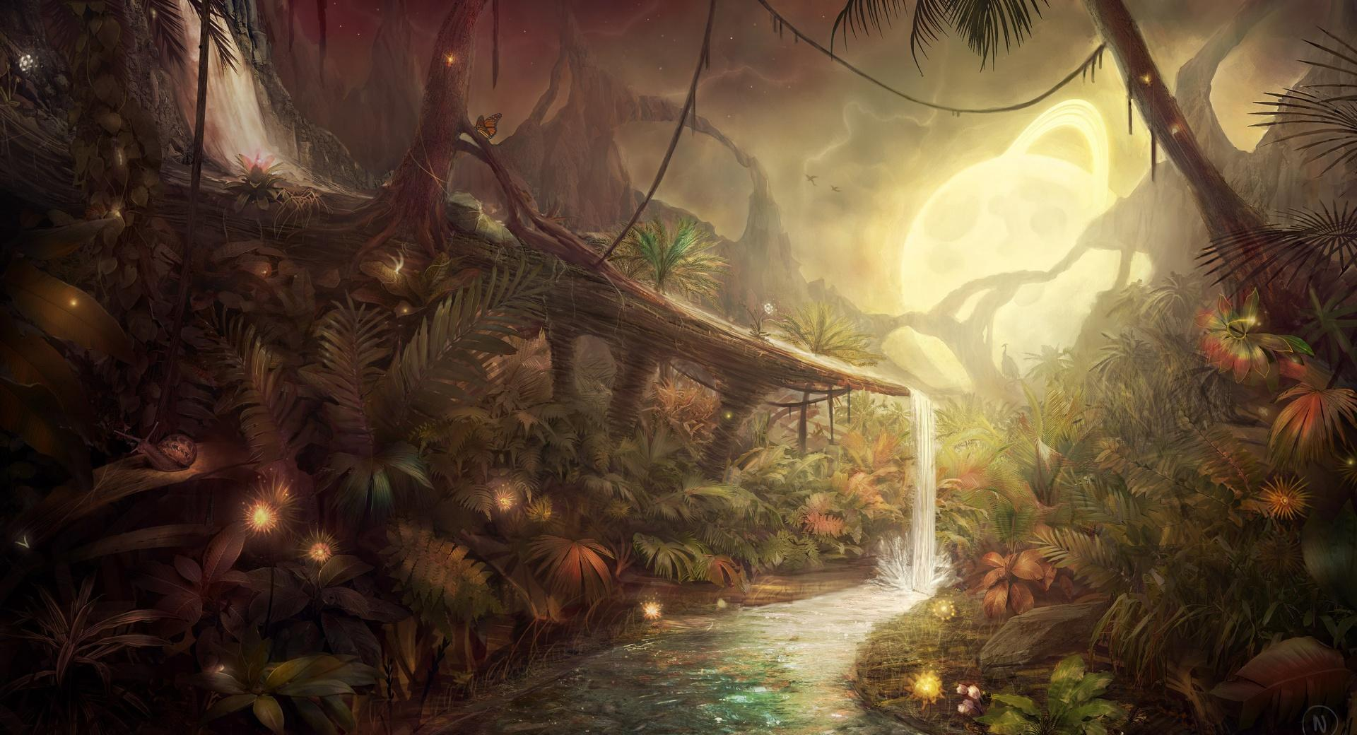 Fantastic Jungle wallpapers HD quality