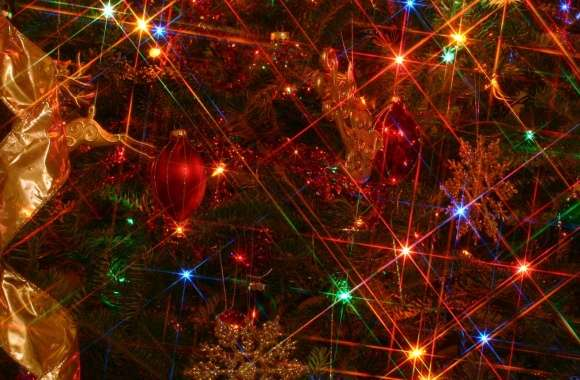 Christmas Tree Lights wallpapers hd quality