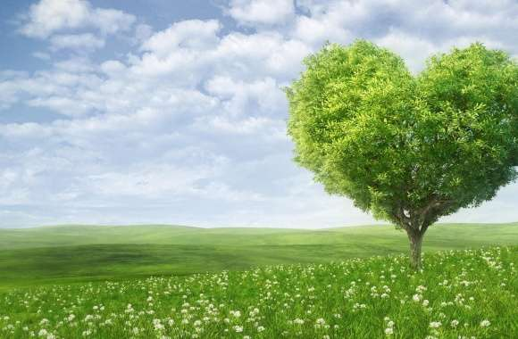 Love Tree wallpapers hd quality