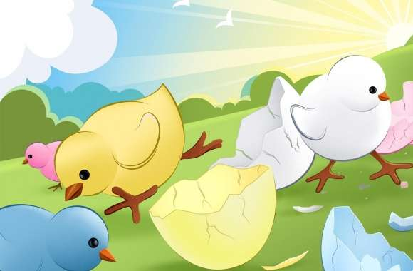 Newly Hatched Chicks wallpapers hd quality
