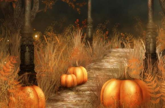 Pumpkins  Halloween wallpapers hd quality