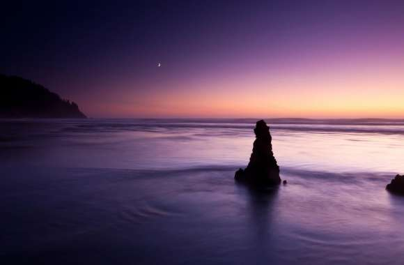 Purple Evening On The Beach