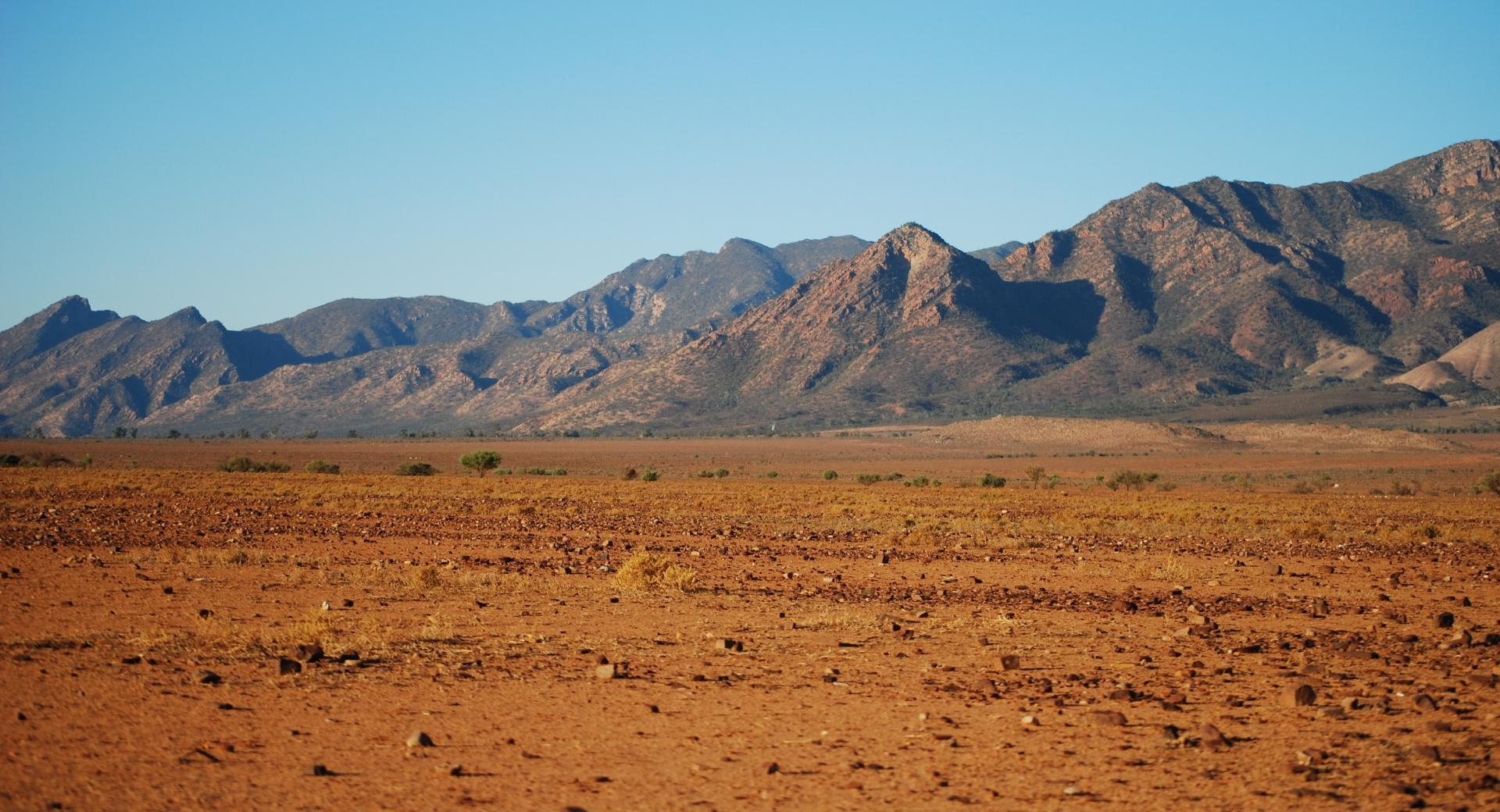 пустыня без смс