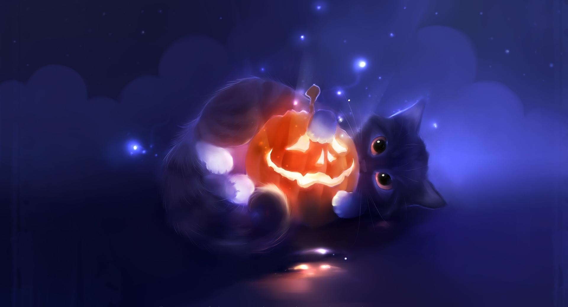 Kitty Playing With A Pumpkin wallpapers HD quality