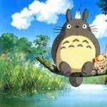 My Neighbor Totoro widescreen
