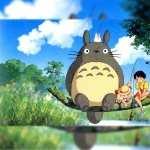 My Neighbor Totoro hd photos