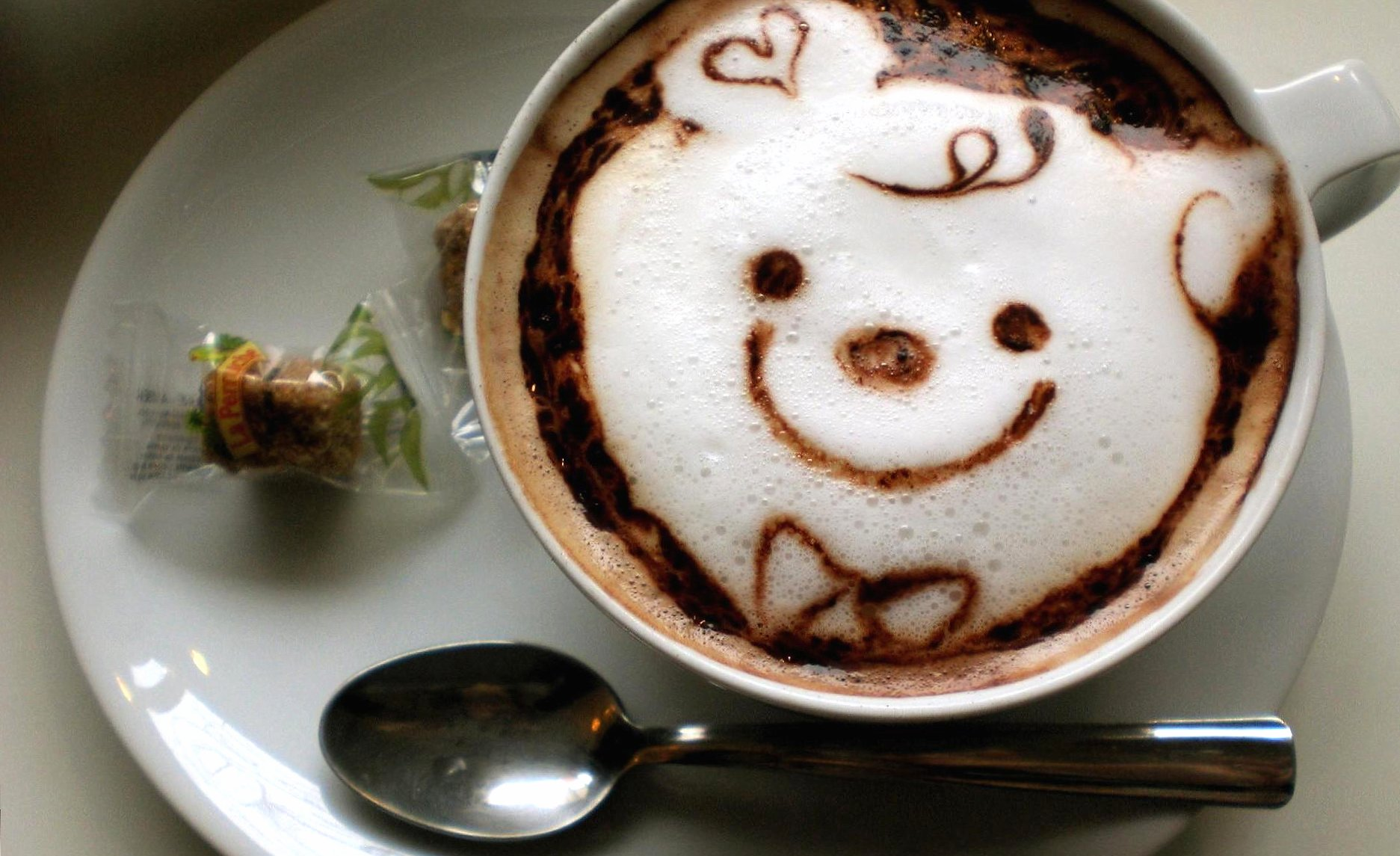 Bear coffee wallpapers HD quality