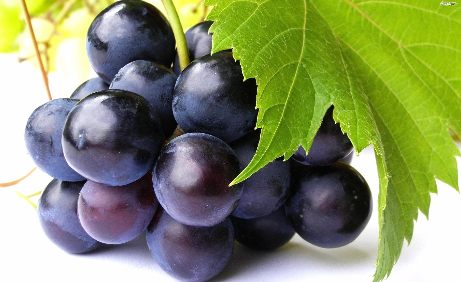 Black little grapes wallpapers HD quality