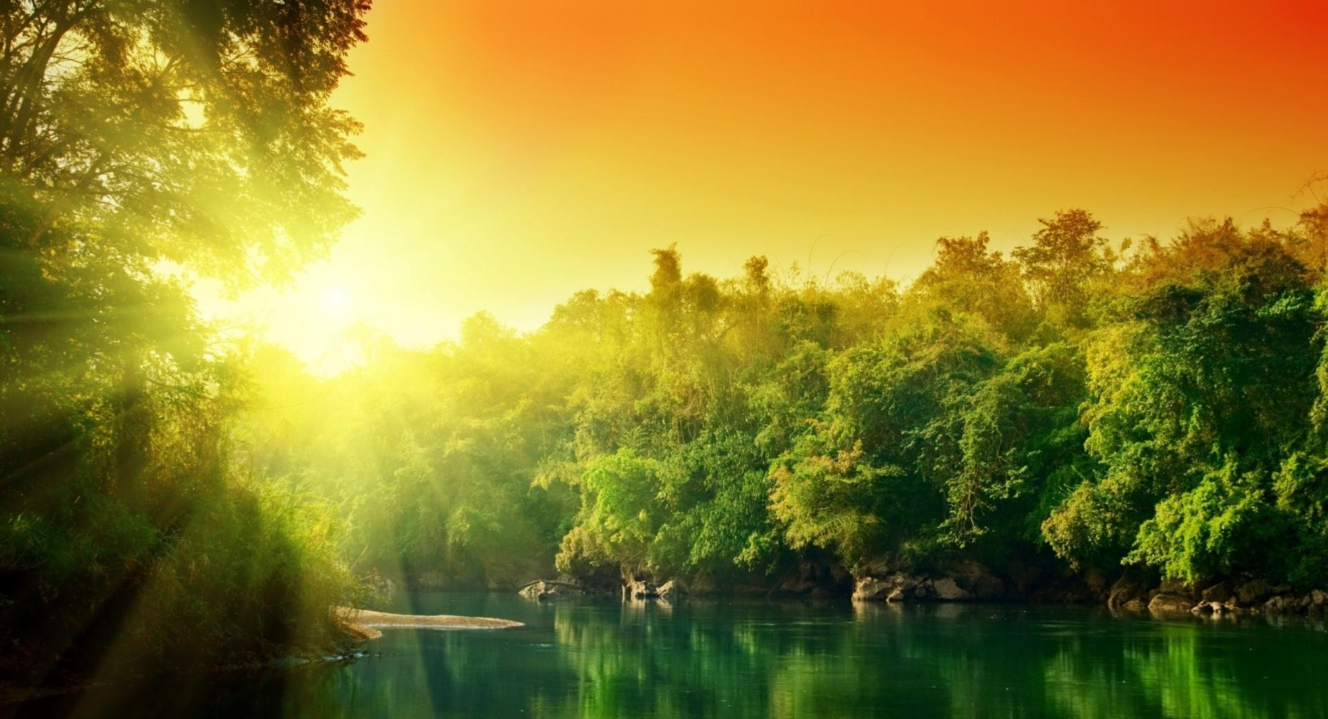 Forest River wallpapers HD quality