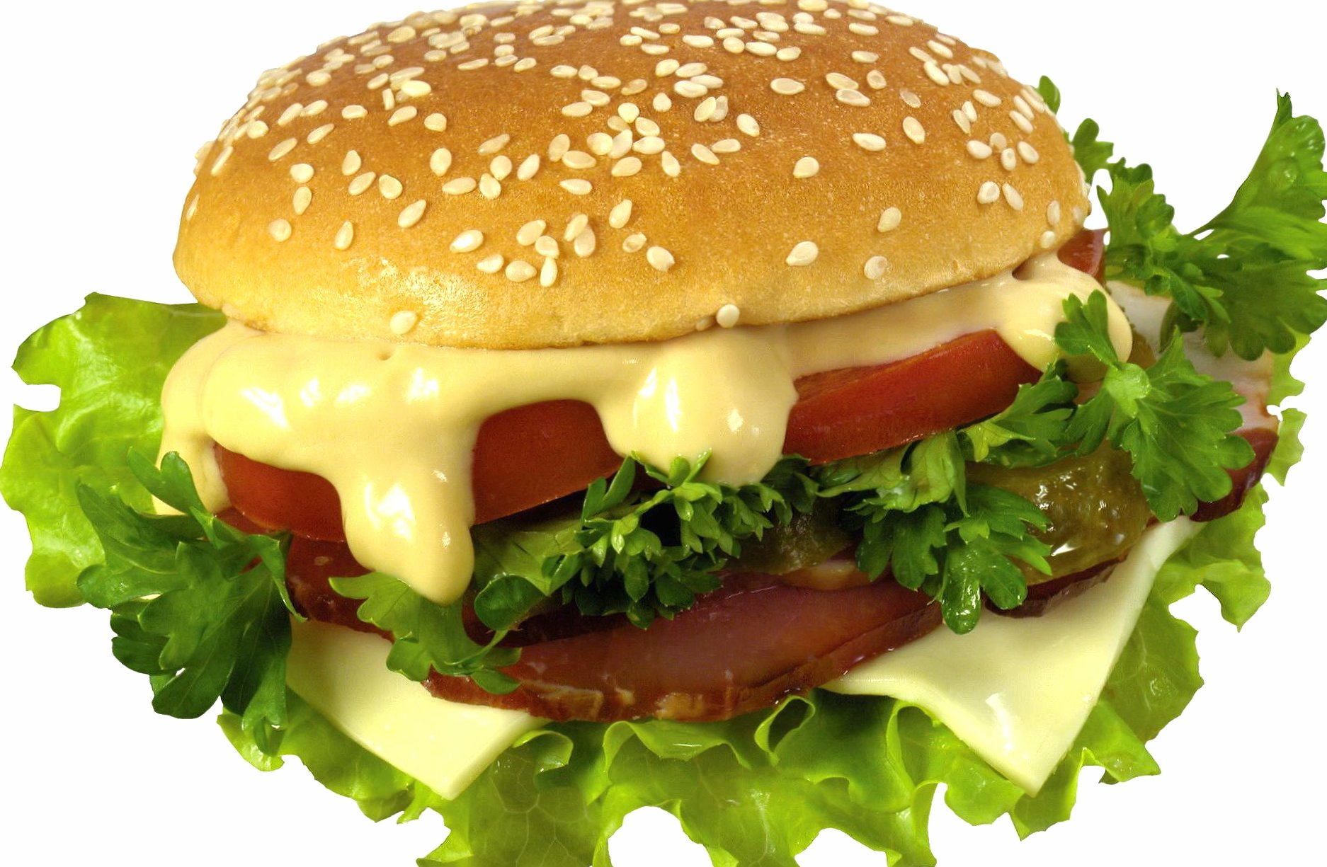 Good hamburger at 1024 x 1024 iPad size wallpapers HD quality