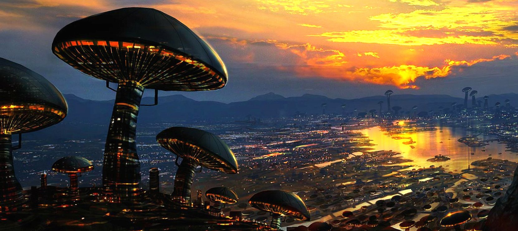 mushrooms city wallpapers HD quality