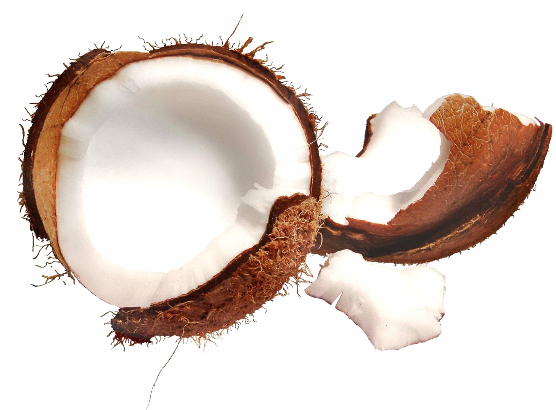 Open coconut wallpapers HD quality