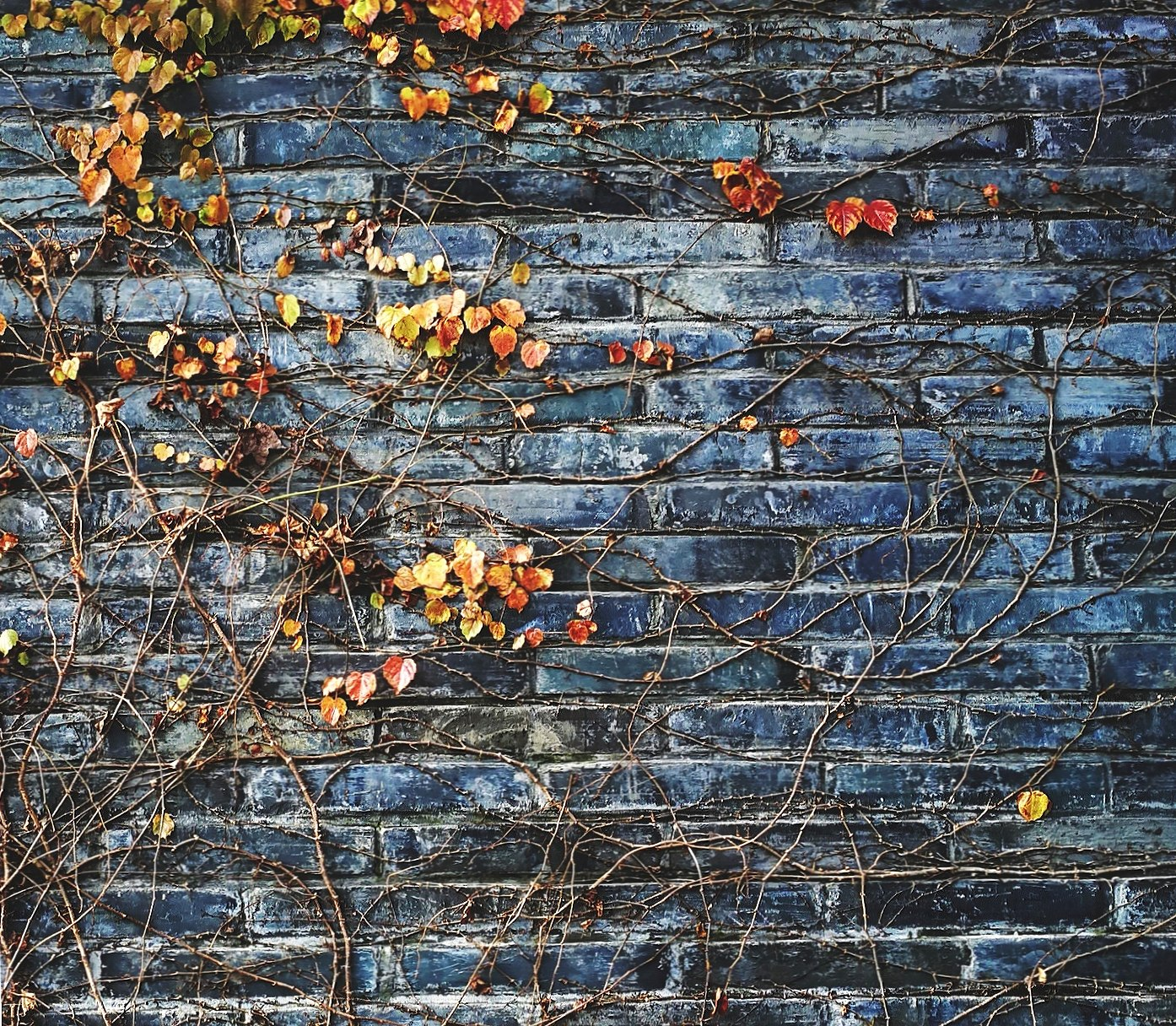 Wall Texture wallpapers HD quality