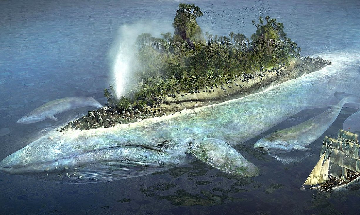 Whale island fantasy wallpapers HD quality