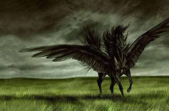 Black horse with wings digital