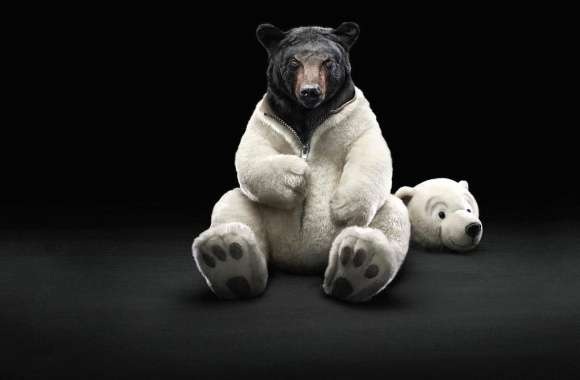 Funny bear in disguise wallpapers hd quality