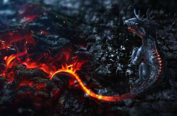 Lava little dragon