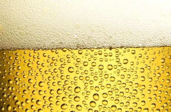 Macro beer wallpapers hd quality