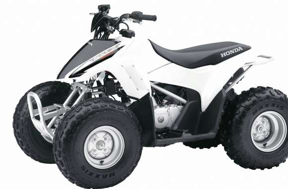 White Honda TRX90X front side view