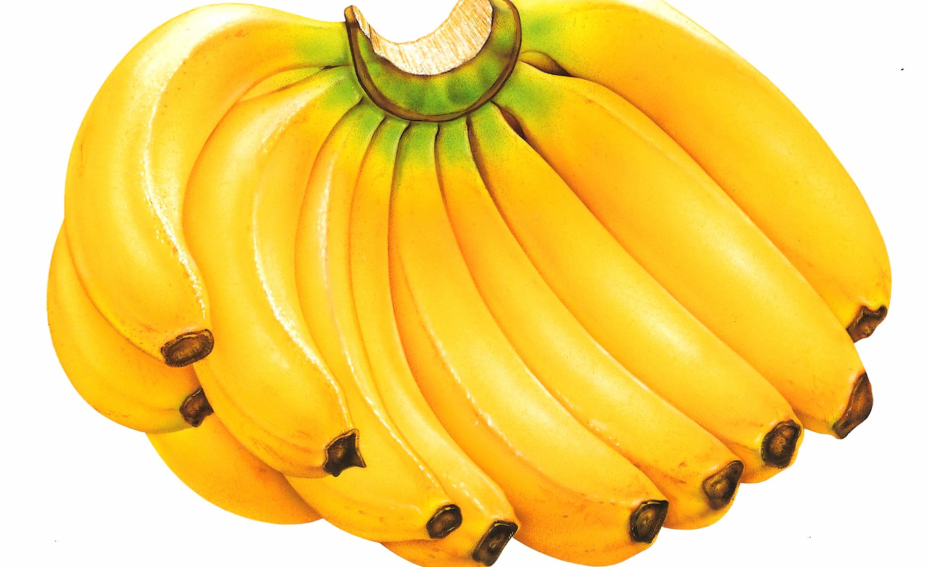 Bunch of bananas wallpapers HD quality