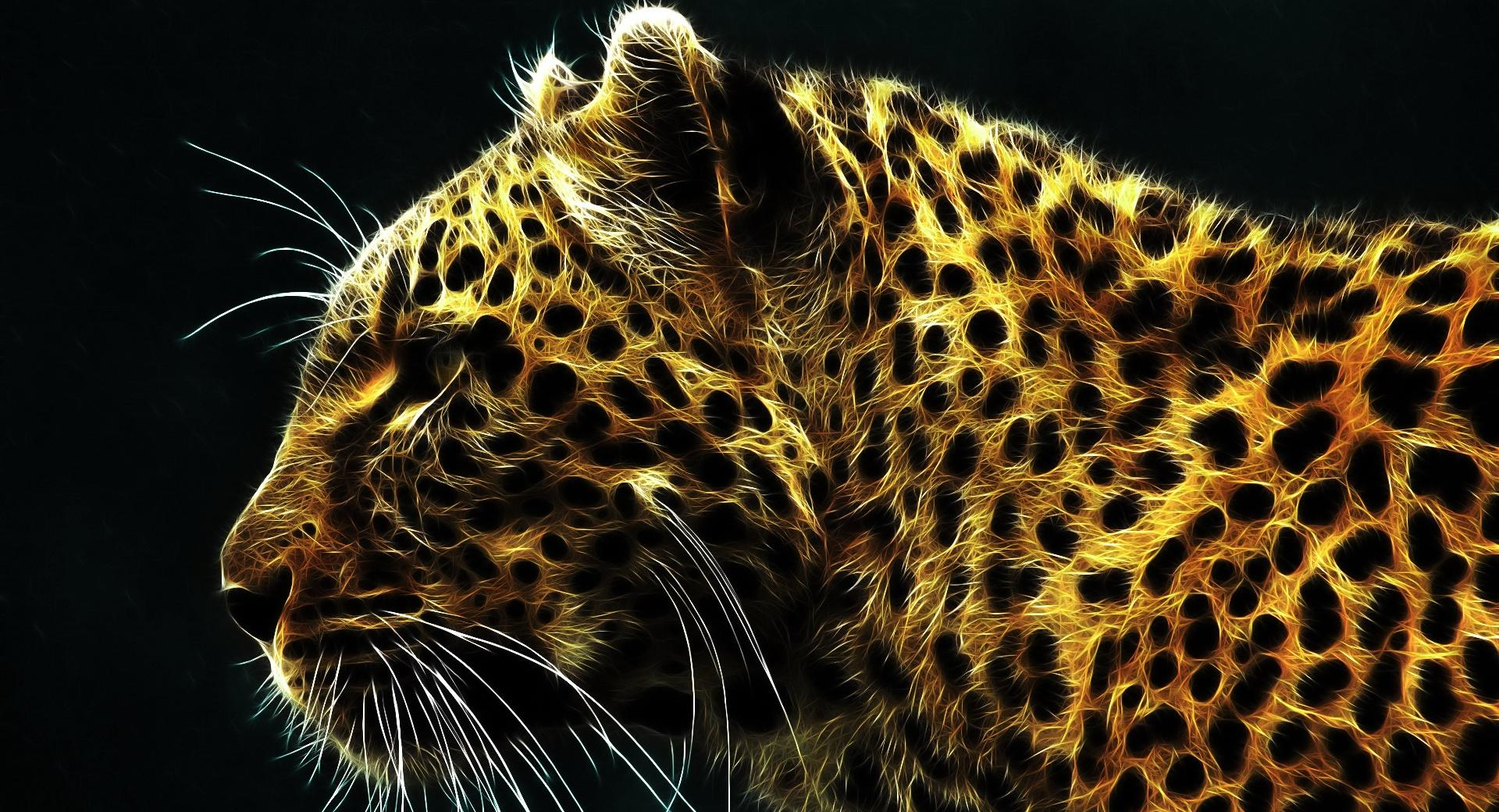 Cheetah In Fire wallpapers HD quality