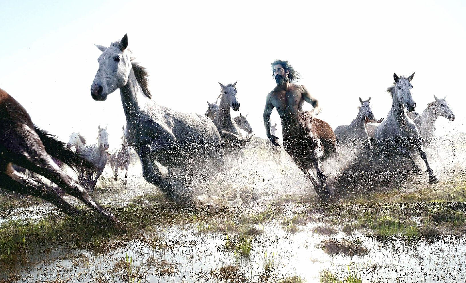 Horse and centaur running digital art wallpapers HD quality