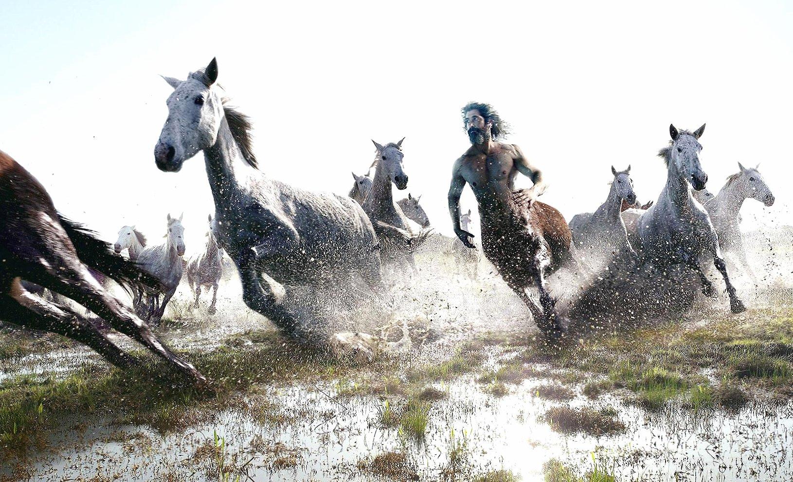 Horse and centaur running digital art wallpapers HD quality