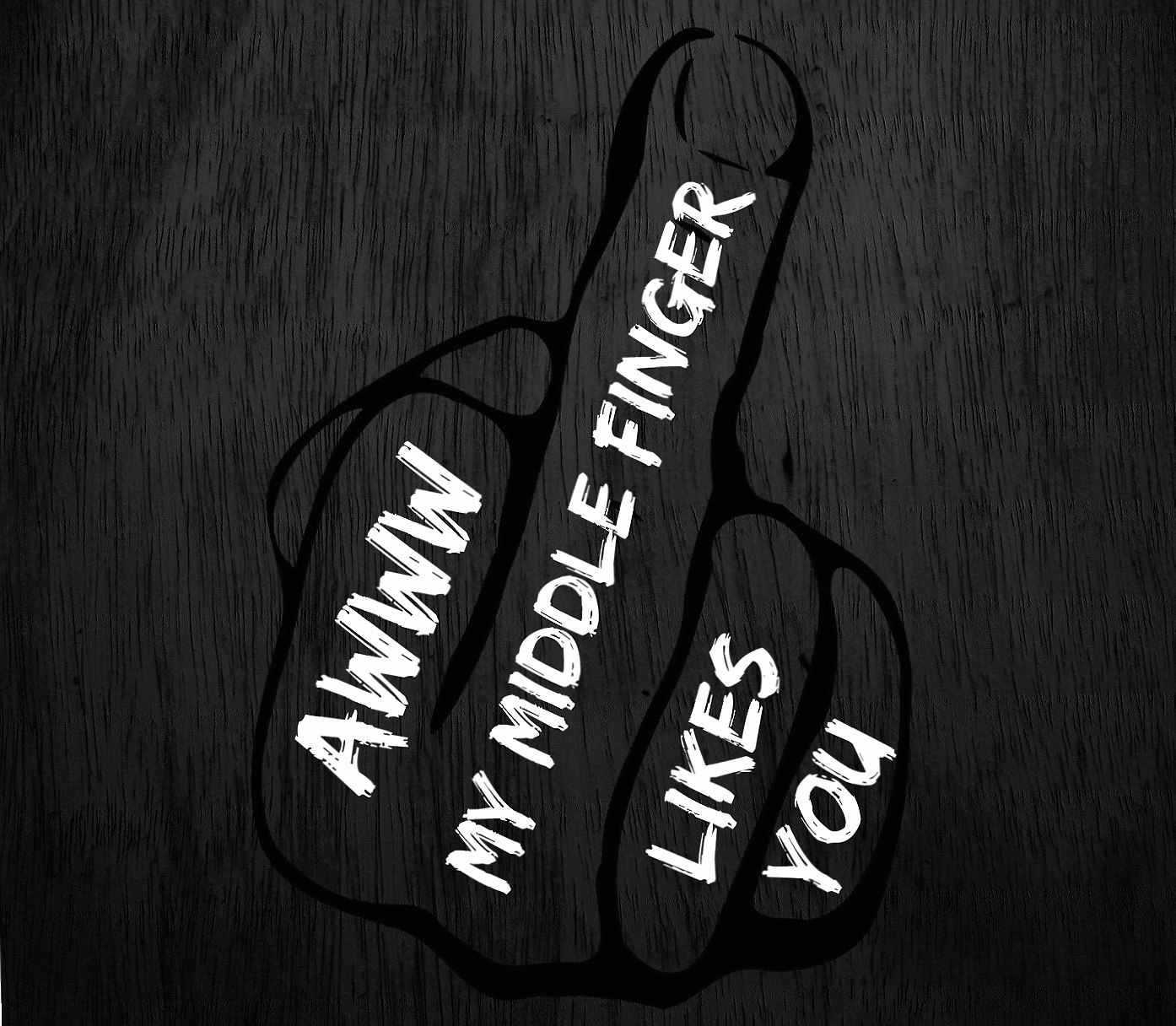 Middle Finger wallpapers HD quality
