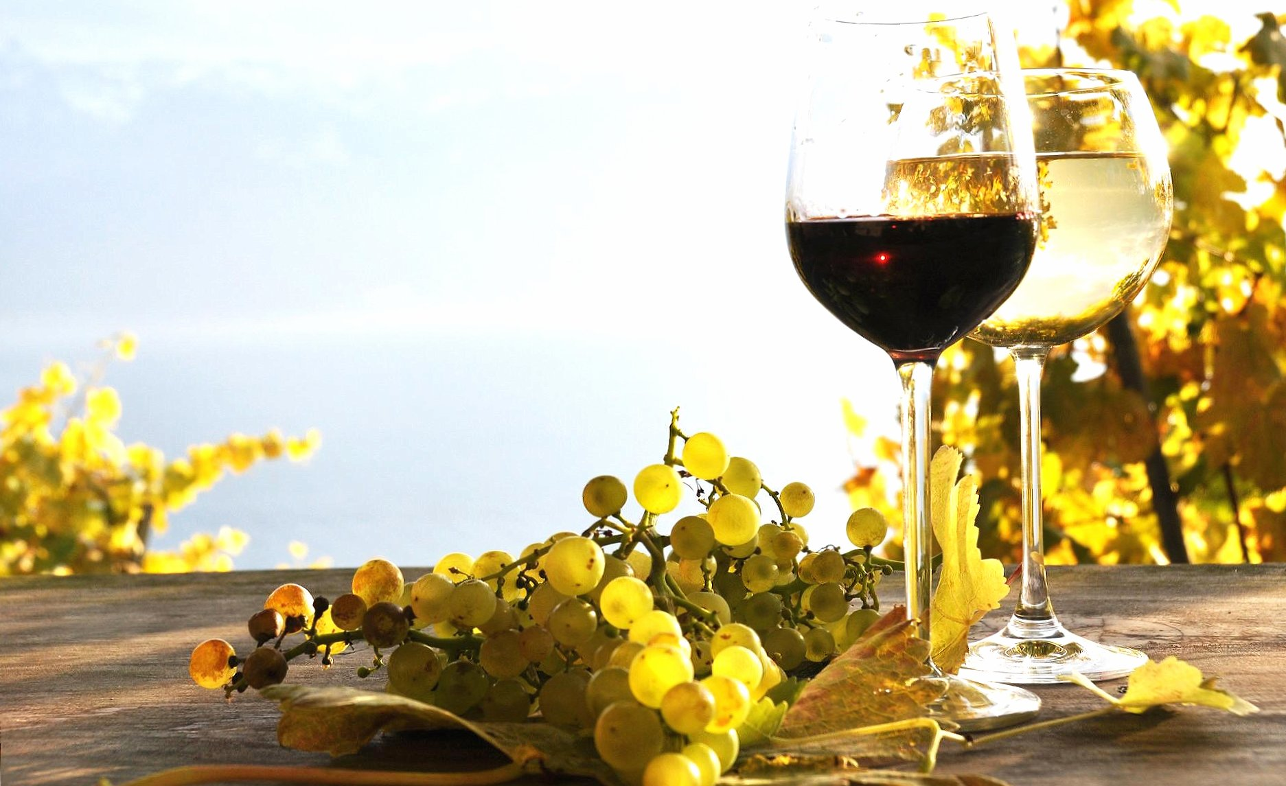 Sunrise and wine wallpapers HD quality