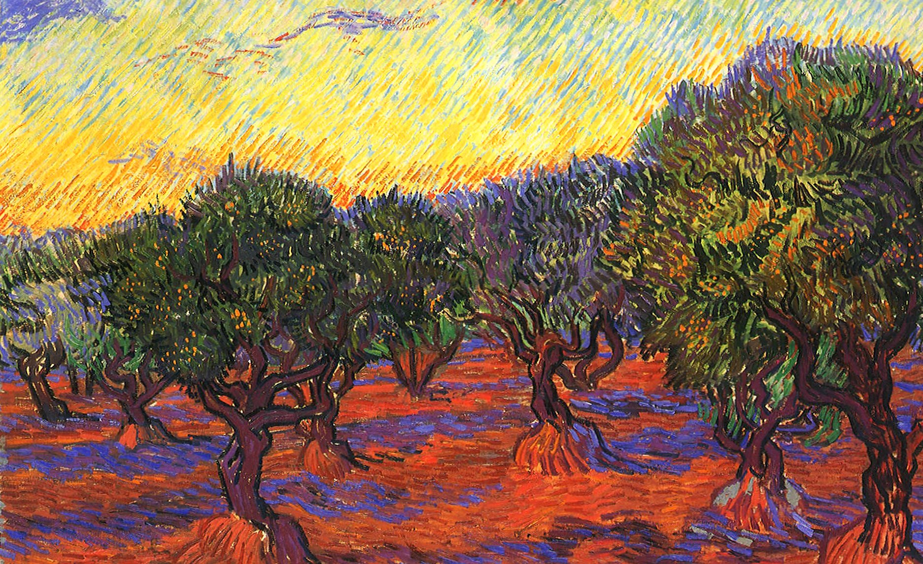 Vincent van gogh olive trees wallpapers HD quality