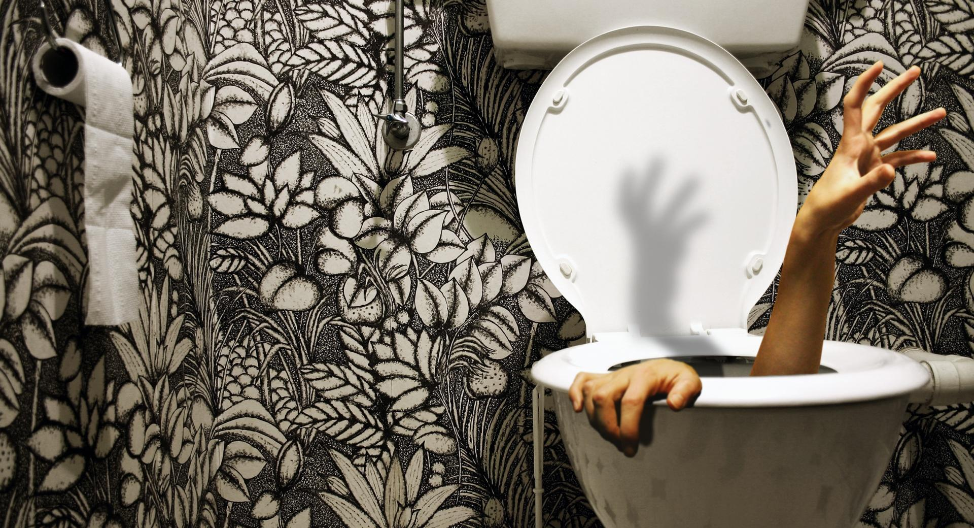 Zombie Toilet wallpapers HD quality