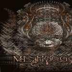 Meshuggah pics