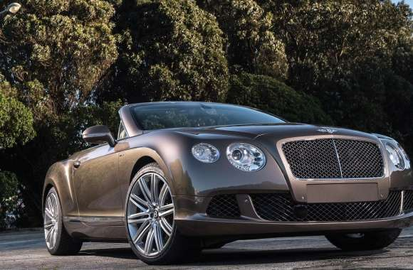 Bentley continental gt speed convertible wallpapers hd quality