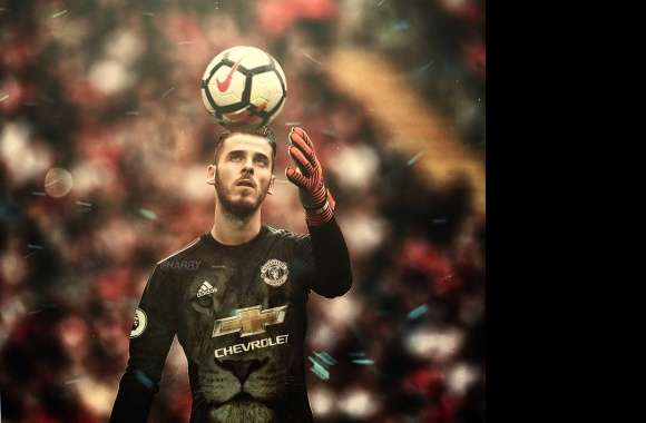 David De Gea wallpapers hd quality
