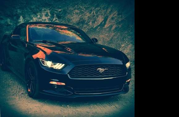 ford mustang 2015 wallpapers hd quality