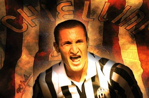 Giorgio chiellini wallpapers hd quality