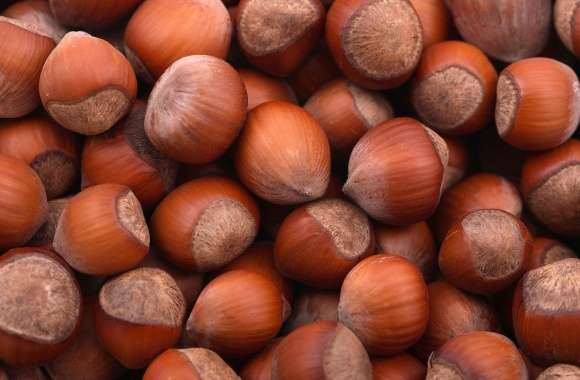 Hazelnuts piled up wallpapers hd quality