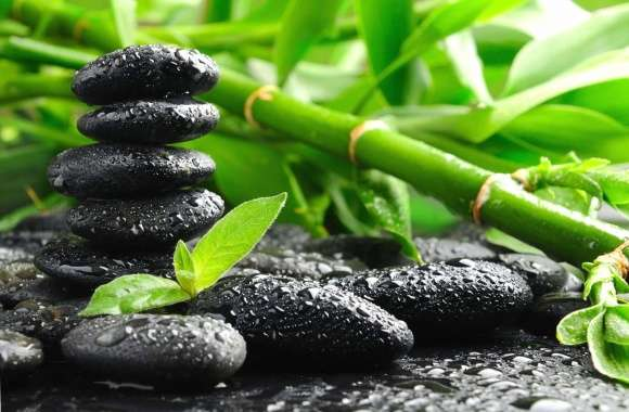 Nature and black stones