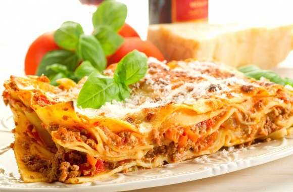 Pie with meat souce pasticcio italy wallpapers hd quality