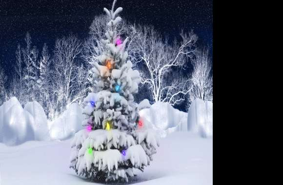 xmas tree wallpapers hd quality