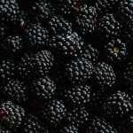 Blackberry 1080p