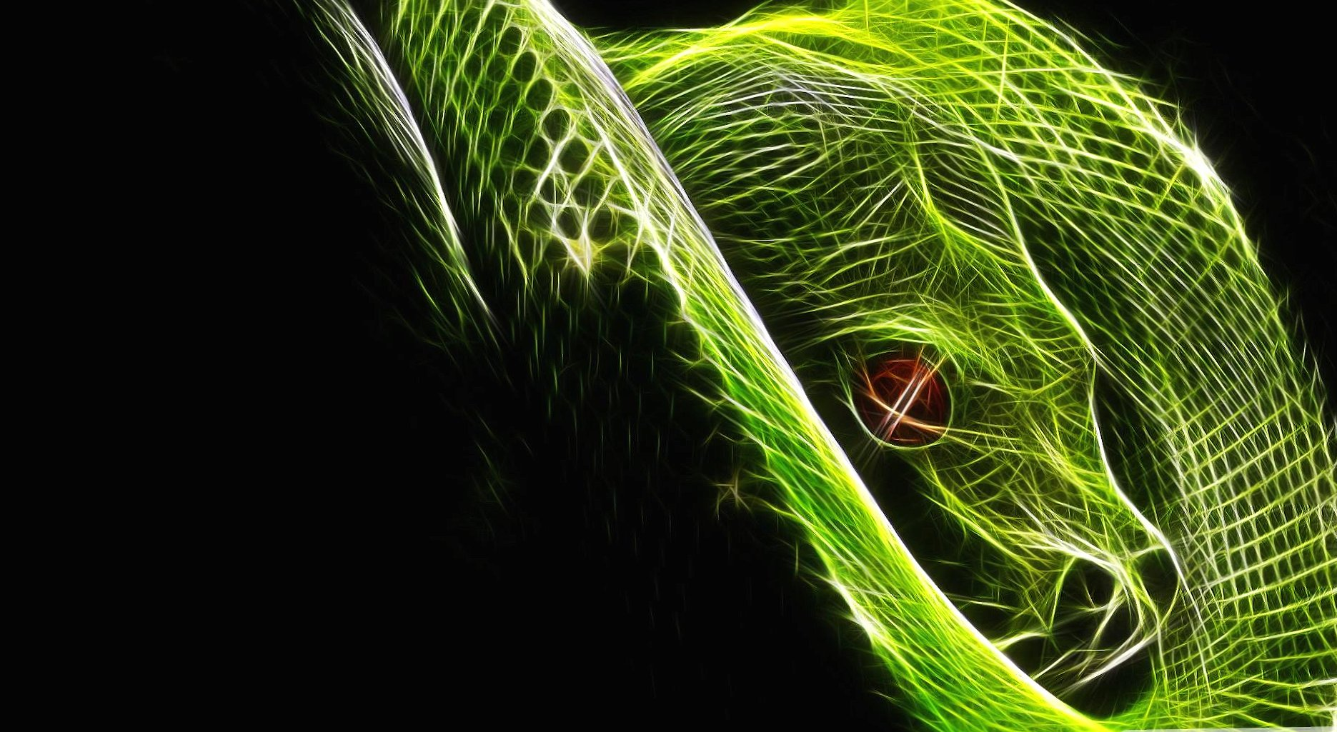 Digital snake wallpapers HD quality