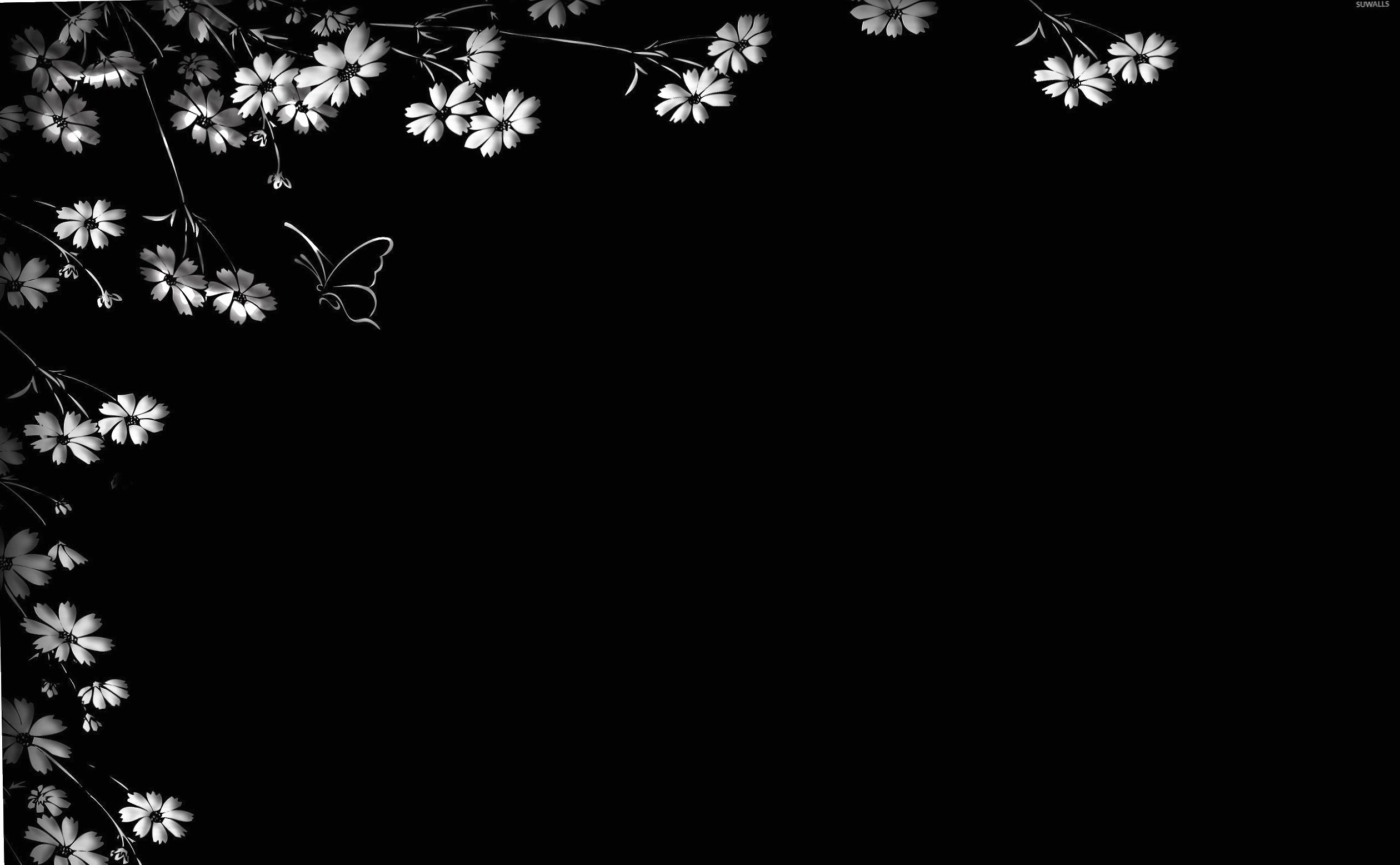 Flowers on the black wall wallpapers HD quality