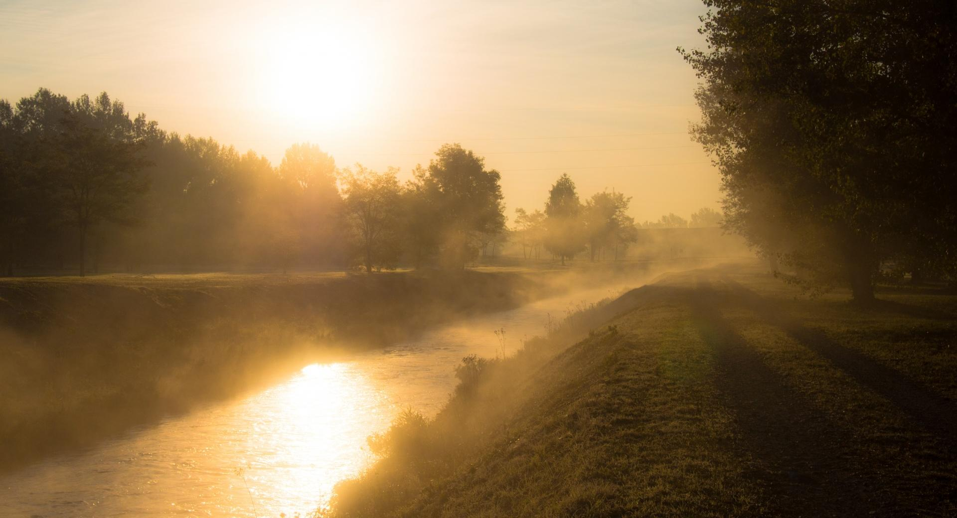 Golden Morning Mist wallpapers HD quality