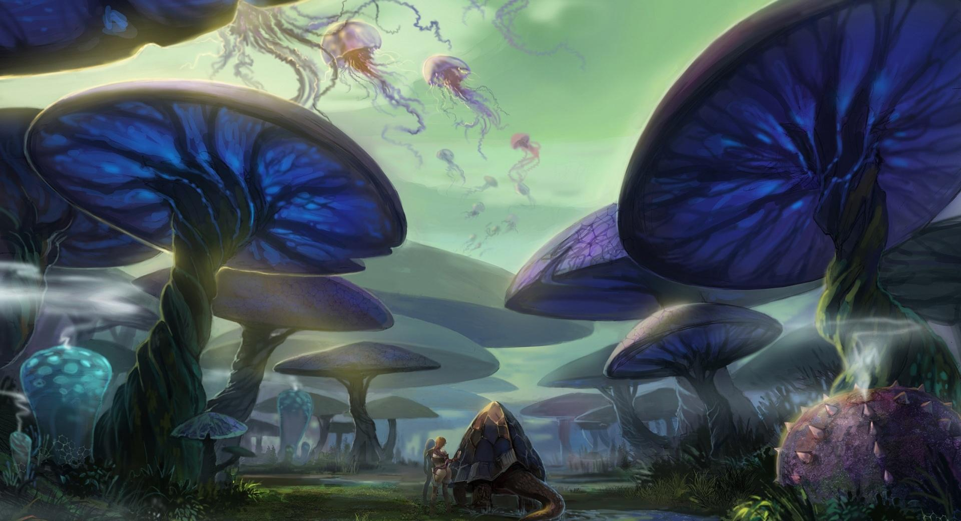 Mushroom Forest wallpapers HD quality