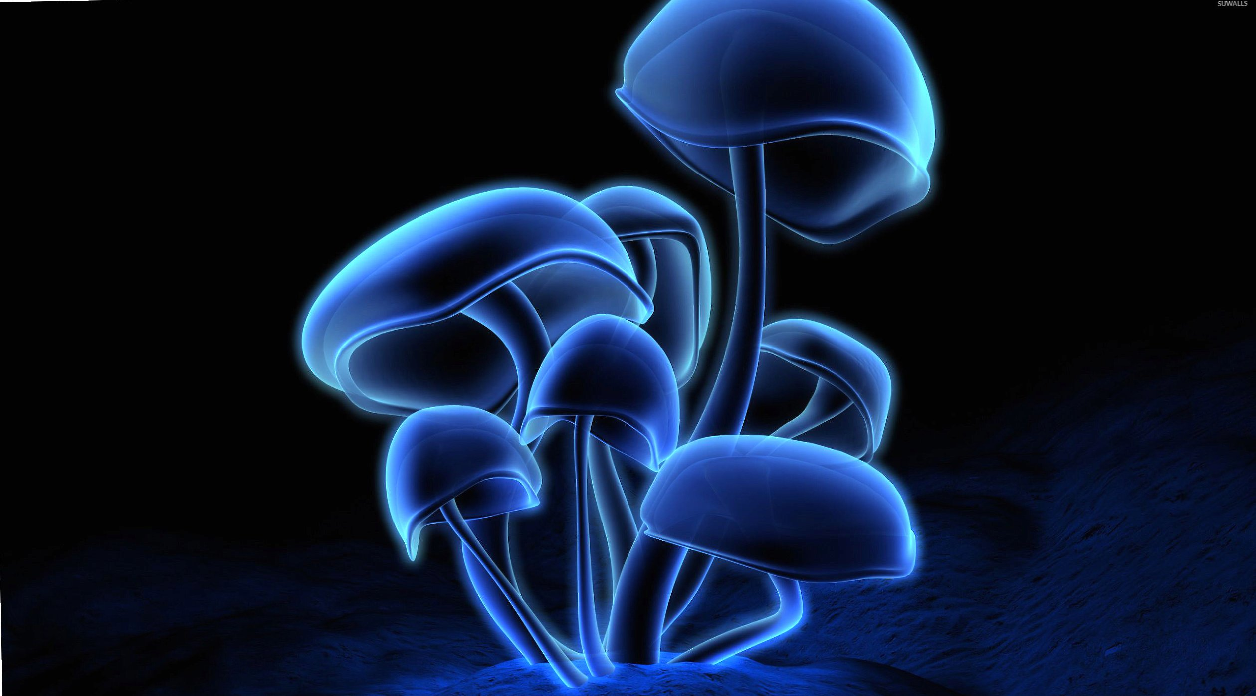 Neon mushrooms wallpapers HD quality