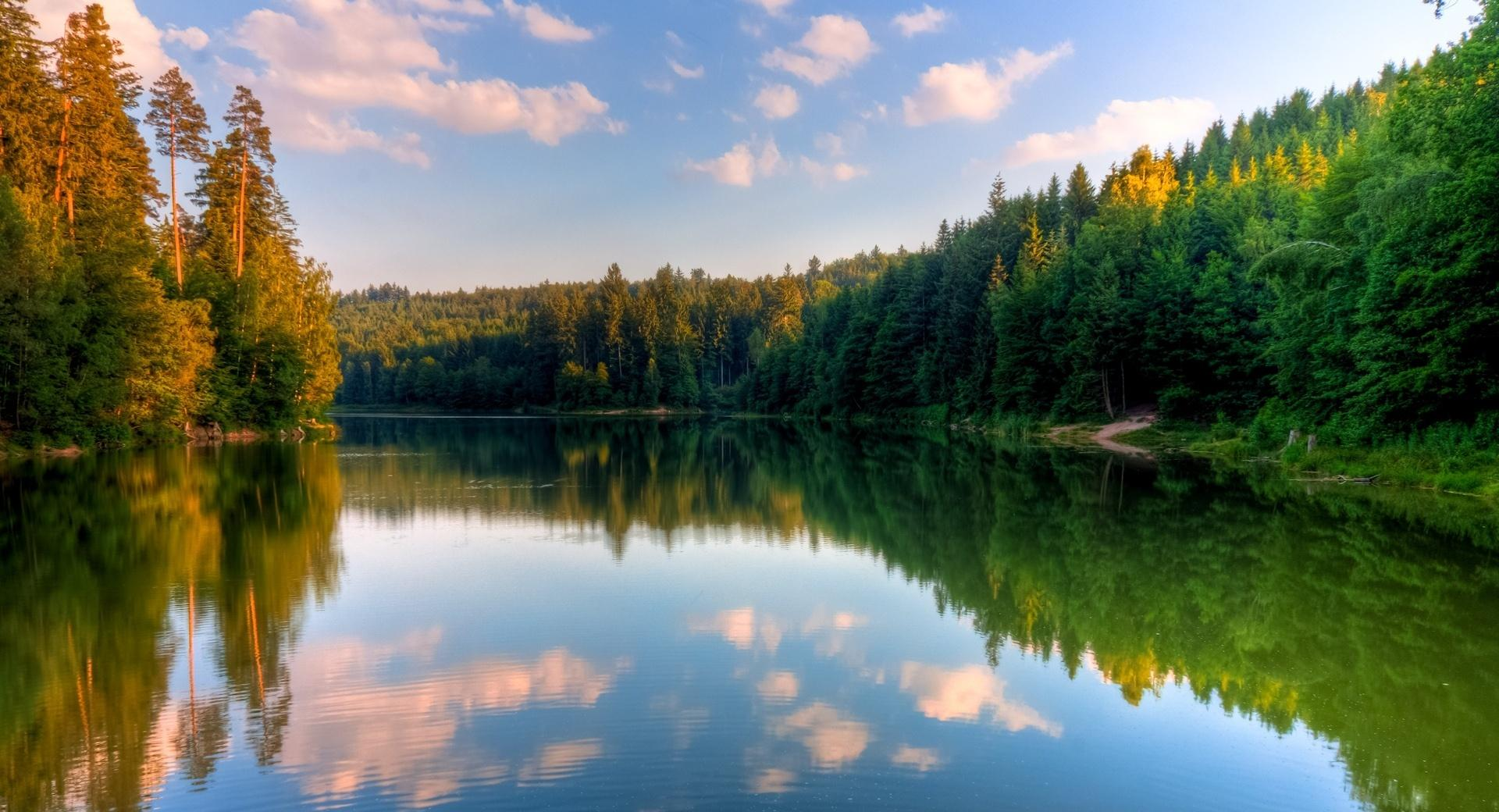 River, Forest wallpapers HD quality