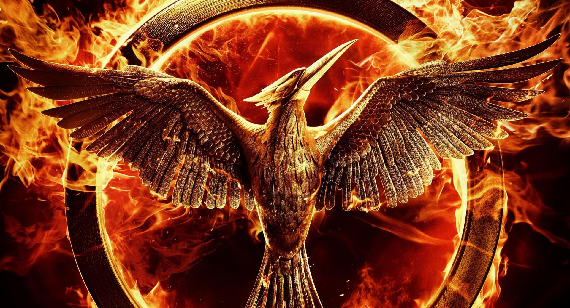 The Hunger Games Mockingjay Part 1 wallpapers HD quality