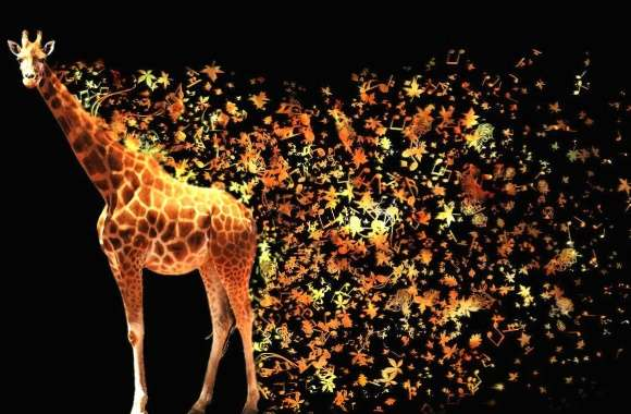 Abstract giraffe wallpapers hd quality
