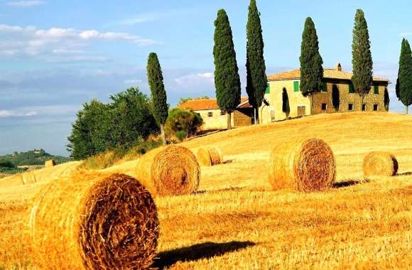 Bale of hay tuscan italy